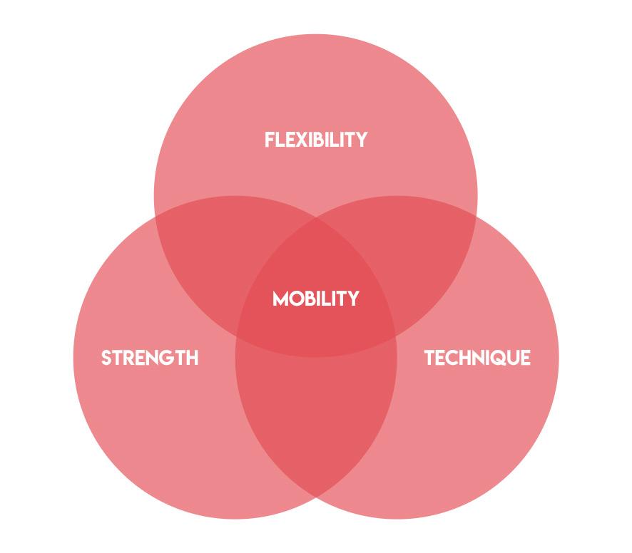 Hockey Mobility Venn Diagram
